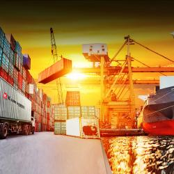Freight Forwarding Activities
