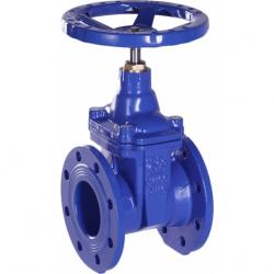 Cast Iron Gate Valve with Rubber Wedge