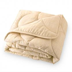 100% Cotton Percale Blanket