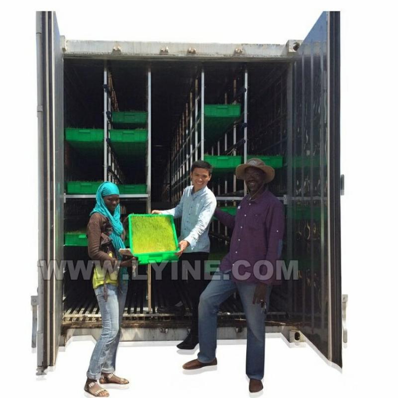 Automatic Animal Fodder Sprout Container / Hydroponic Barley Growing System