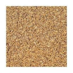 High-Quality Rice Husk Biomass