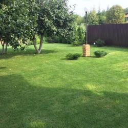 Rolled Multi Purpose Lawn Grass