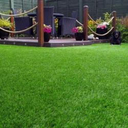 Rolled Standard Artificial Lawn Grass