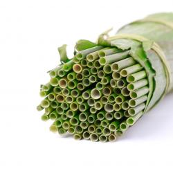 Dried Grass Drinking Straws / Vietnamese Natural Drinking Straws