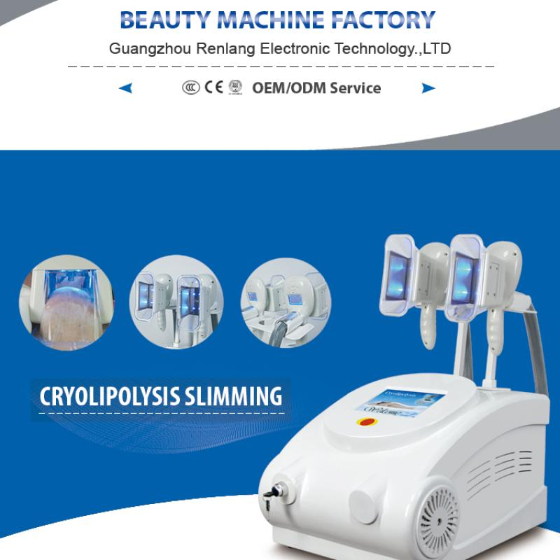 Cryolipolysis Slimming Machine buy wholesale - company Guangzhou Renlang Electronic Technology Co., Ltd. | China