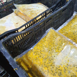 Frozen Passion Fruit Puree with Seeds 20 kg PE Packing