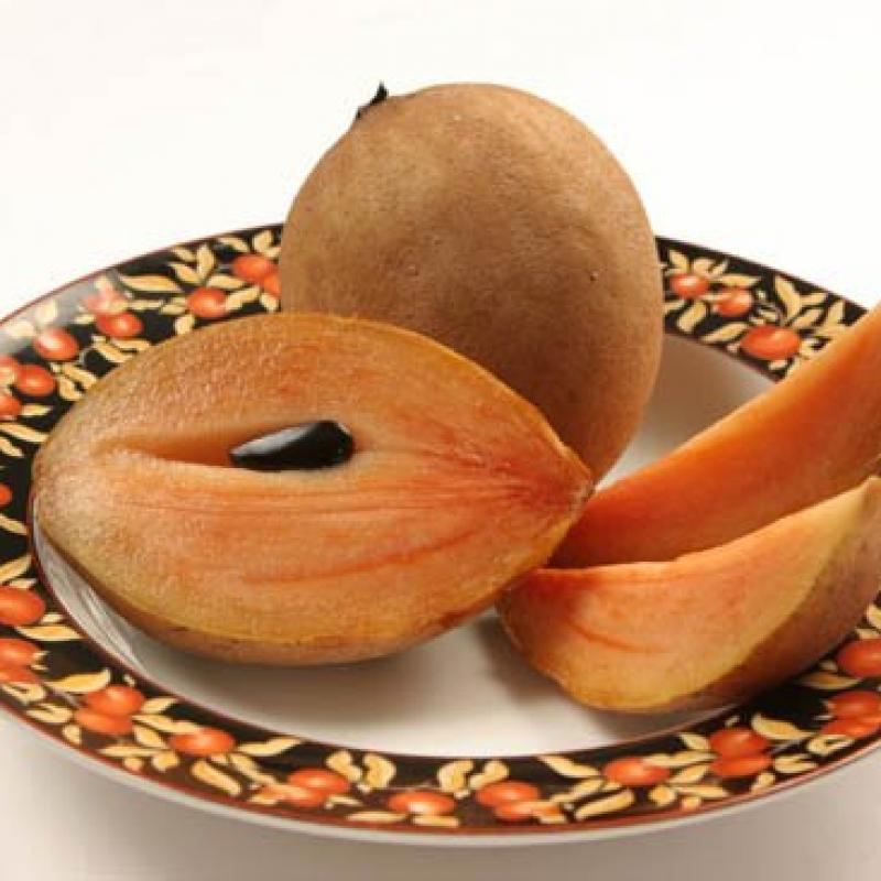Sapodilla Fruit  buy wholesale - company DONG DUONG AGRICULTURAL AND FORESTRY PRODUCTS IMPORT EXPORT, JSC | Vietnam