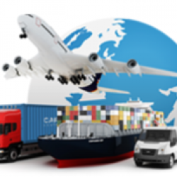 Freight Forwarding, Customs Brokerages, Interinsular, Warehousing, Trucking