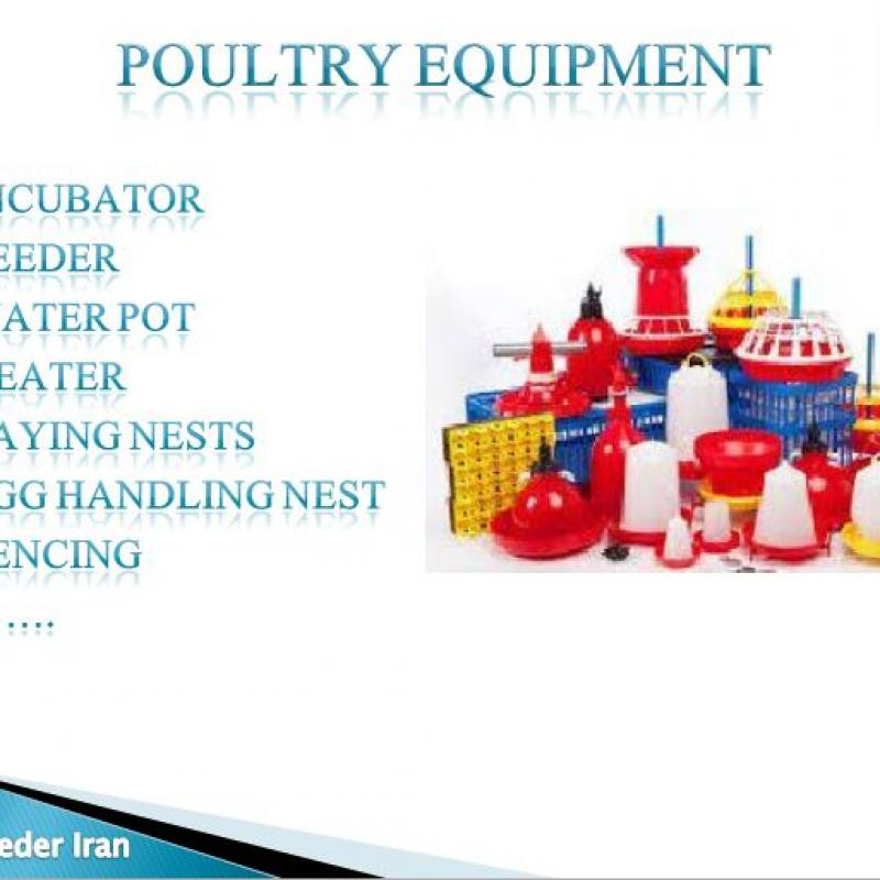 provider and supplier poultry production